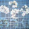 乾燥後 紫陽花の花