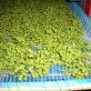 乾燥前 山椒